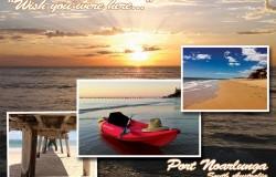 Easy Kayaks Postcard Front