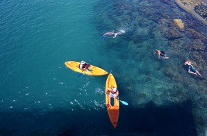 Explore the reef in Port Noarlunga in our Peekaboo, glass bottom kayaks