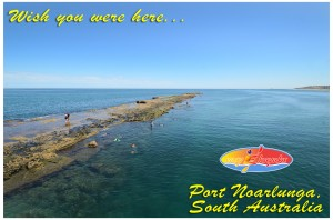 Easy-Kayaks-Explore-The-Reef-7