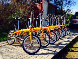 easy-bike-hire-folding-bicycles